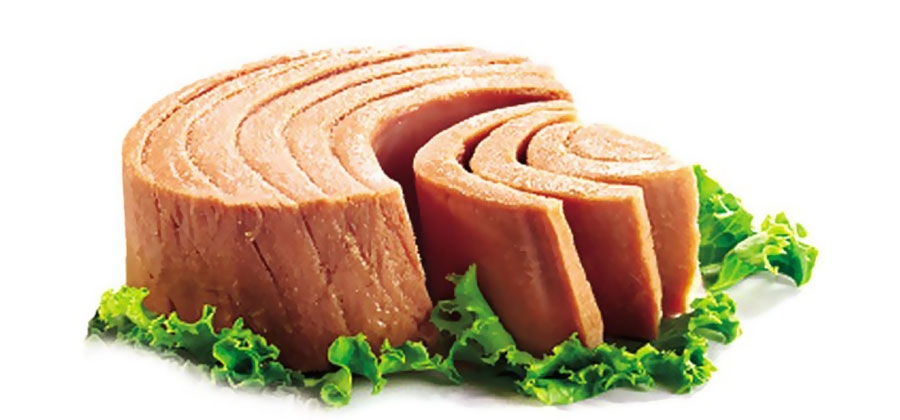 Tuna fillet in vegetable oil